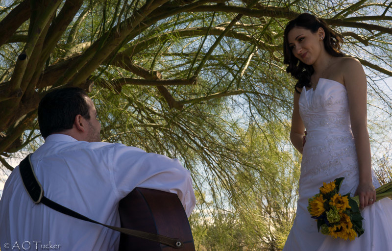 where to elope Mesa-Tempe-Gilbert-Chandler-Apache Junction